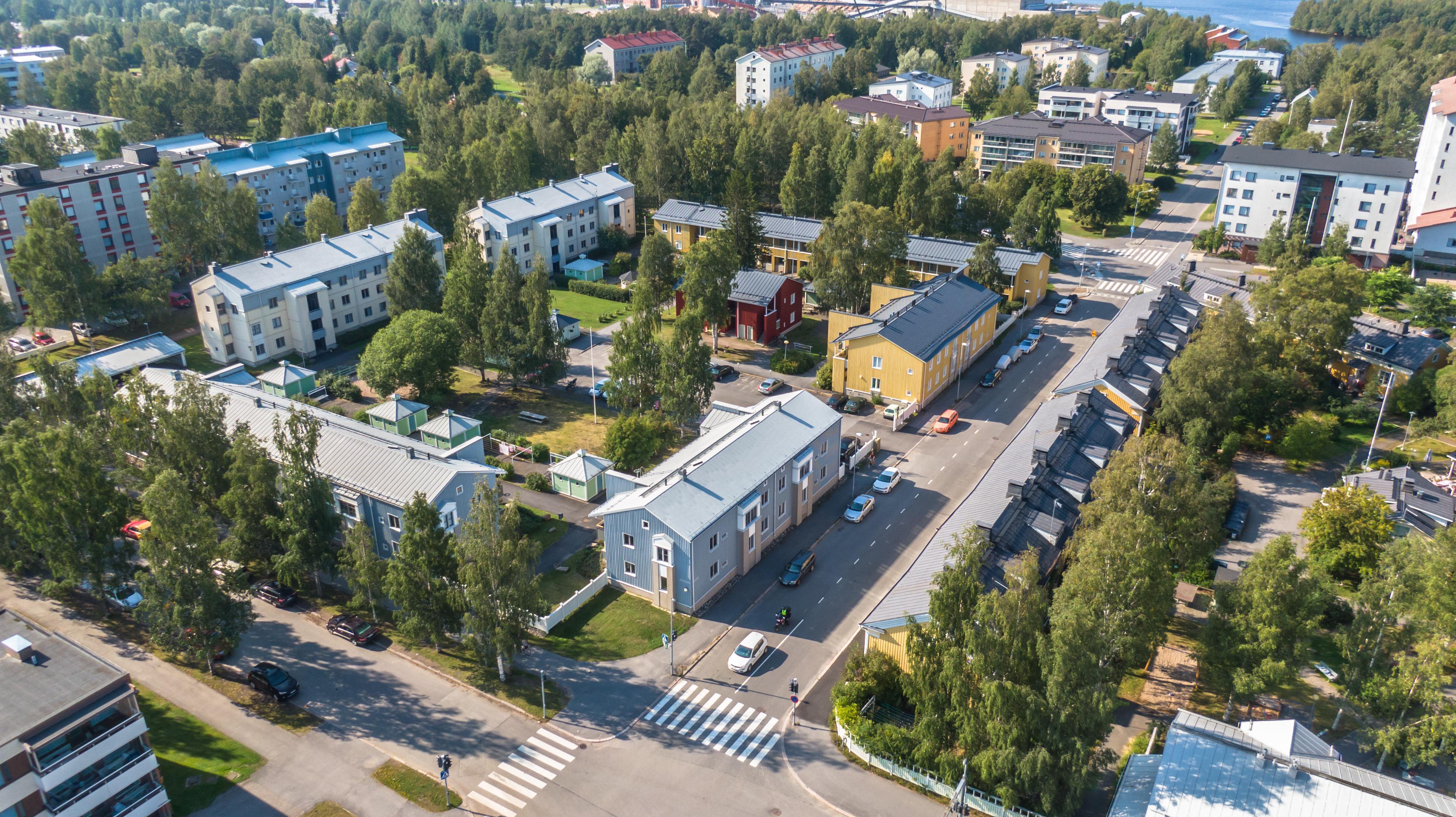 Puu- ja kerrostaloja puistomaisessa kaupunkikorttelissa: kesällä otettu ilmakuva Oulun Heinäpäässä.