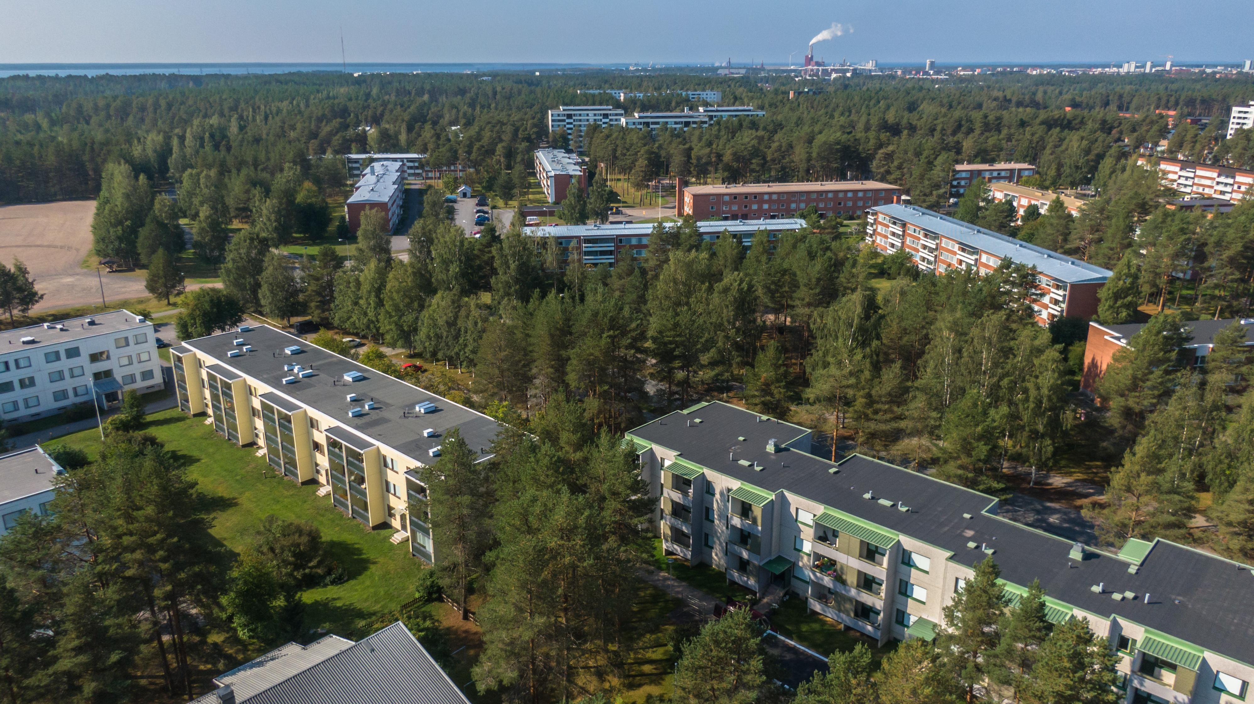 Dronen avulla otettu ilmakuva Oulun Kaukovainion asuinalueesta. Metsää ja kerrostaloja.