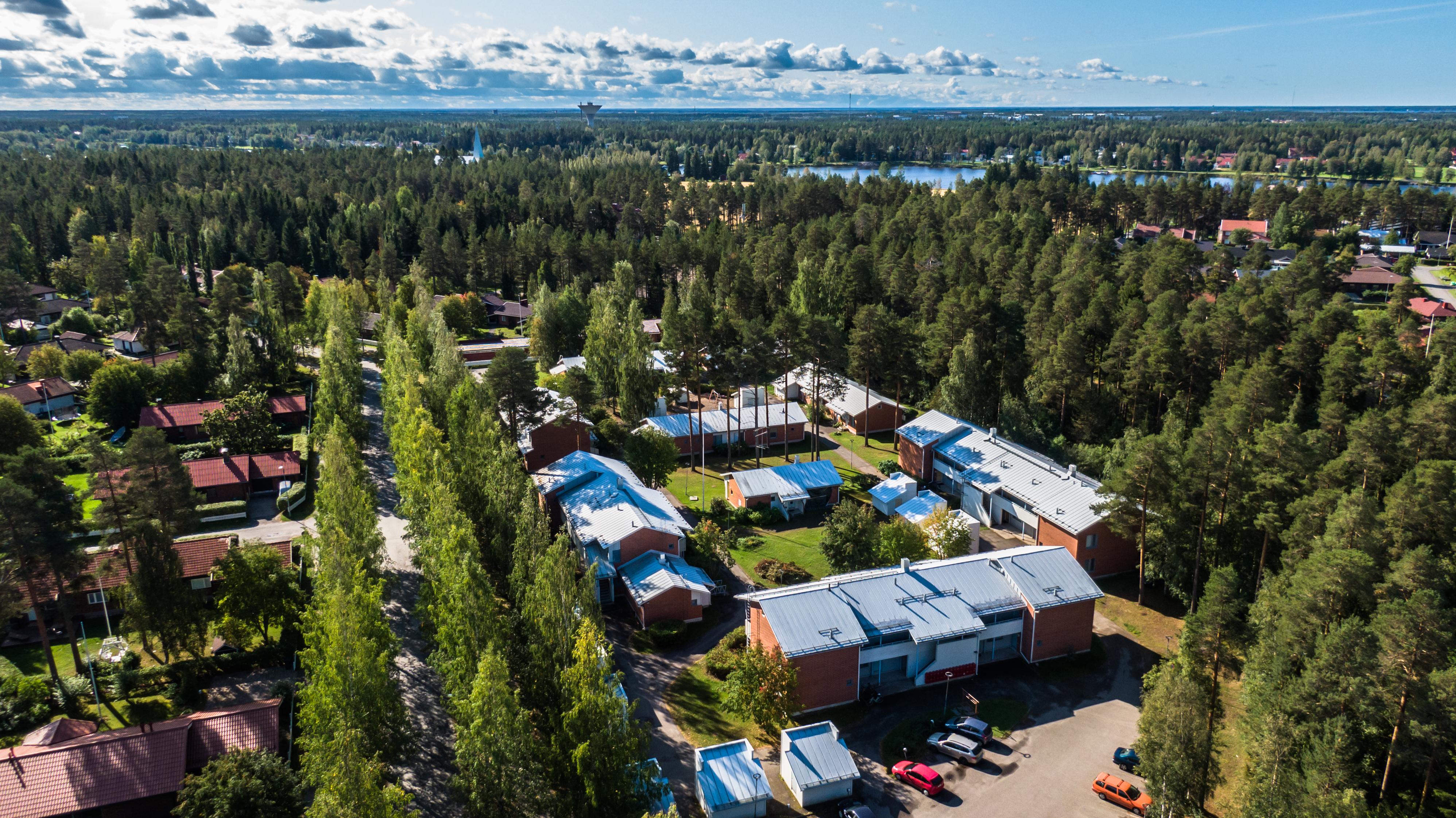 Metsän ympäröimää kaupunkilähiötä ilmassa otetussa kuvassa Oulun Kirkkokankaalta. Sininen taivas ja poutapilviä.