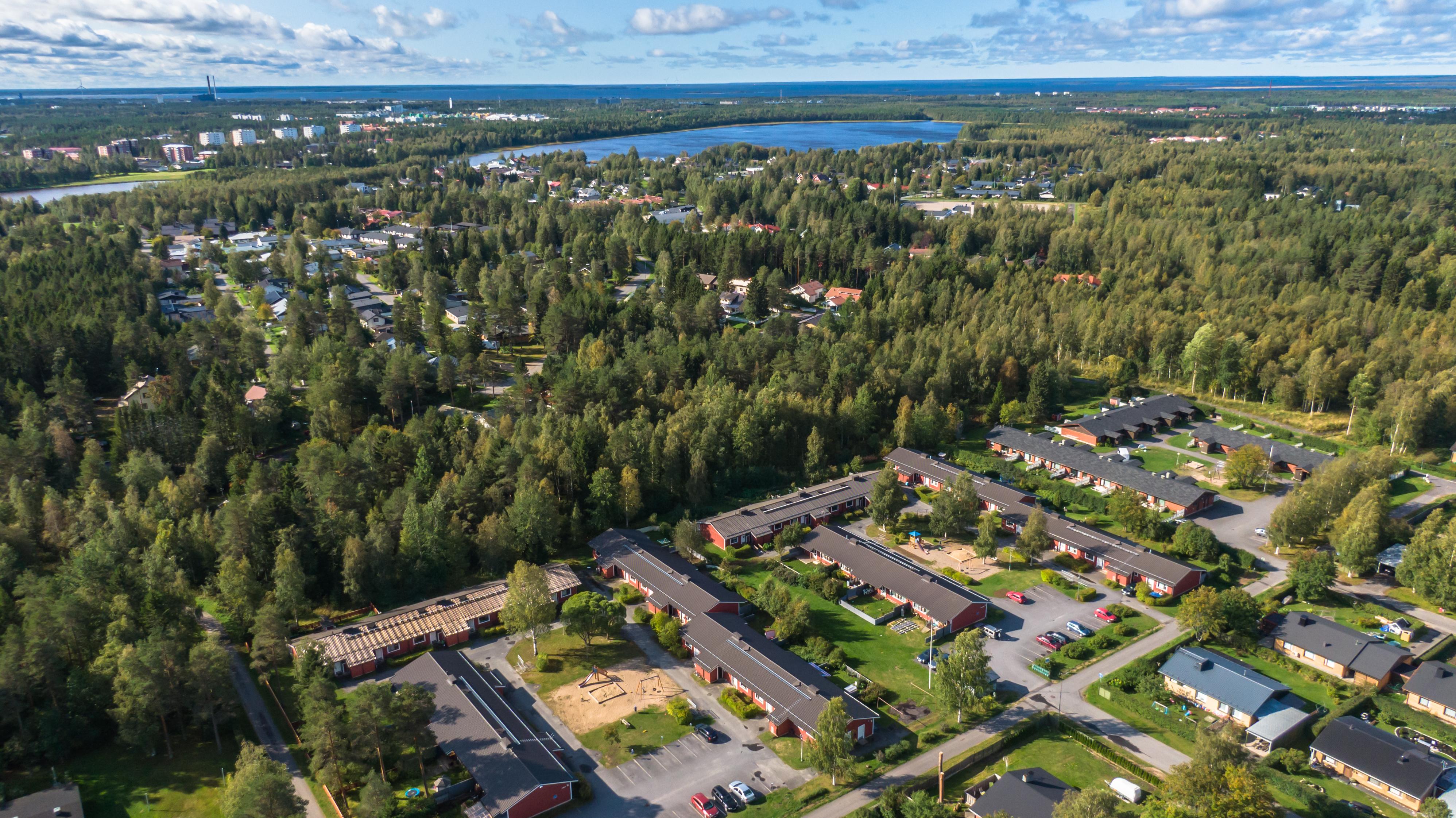 Kesäinen ilmasta otettu kuva Kuivasjärven kaupunginosasta. Metsää, järvi ja rivitaloja.
